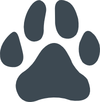 kutyabarat-szallashely